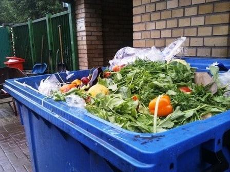 eliminate food waste