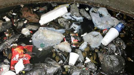 Ban Plastic Foam