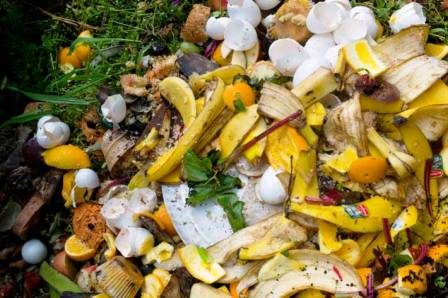 Disposes of Food Waste