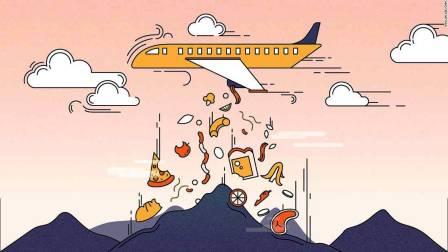 airline waste