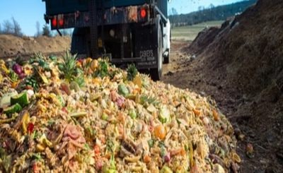 Food Waste into Green Energy