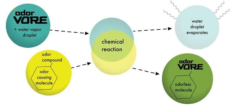 OdorVore-Reaction-1.2